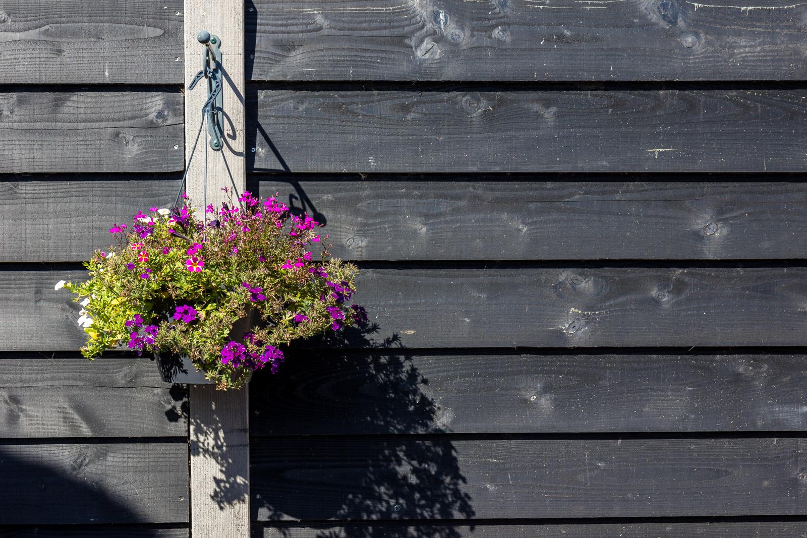 Omheining-tuin-Den-Oever-5289